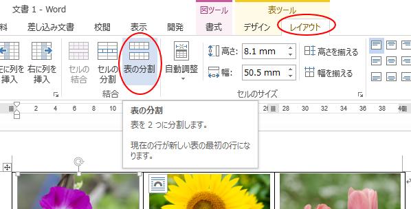 [表の分割]ボタン