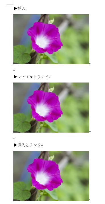3つの方法で画像を挿入