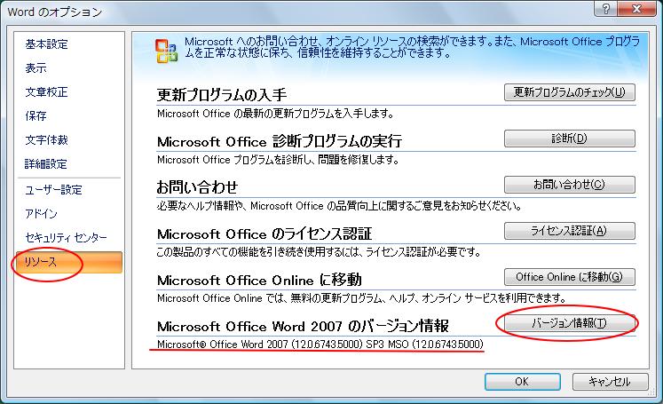 リソースのバージョン情報ボタンをクリック