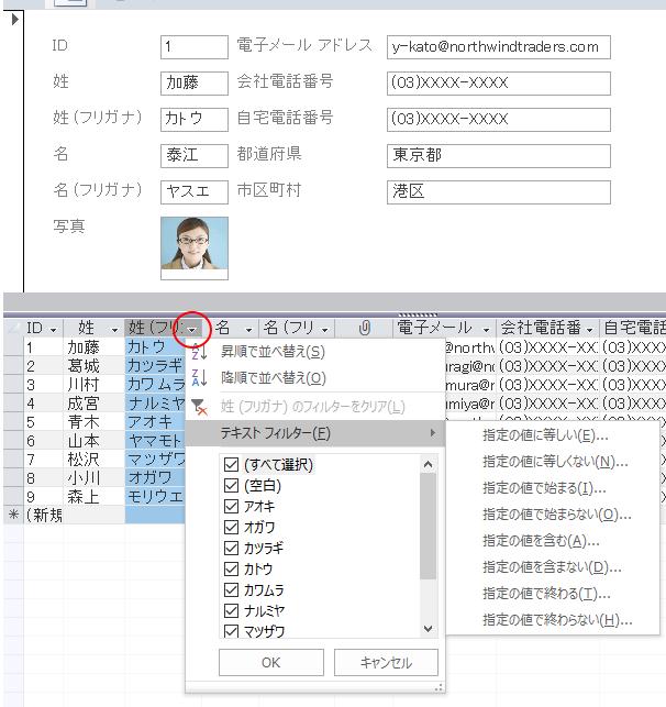 分割フォームのデータシートのフィルターボタン